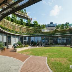Roof garden of Tokyo Midtown Hibiya (東京ミッドタウン日比谷)