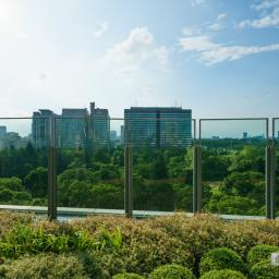 Landscape of Hibiya Park and Kasumigaseki (日比谷公園と霞が関)