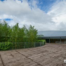 Indoor view of Makino Museum of Plants and People (高知県立牧野植物園 牧野富太郎記念館)