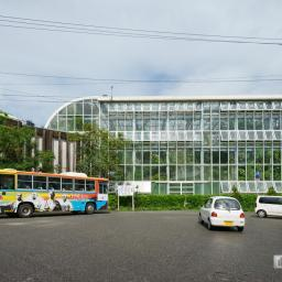 Indoor view of Makino Museum of Plants and People (高知県立牧野植物園 牧野富太郎記念館)