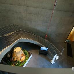 Indoor view of Akita Museum of Art (秋田県立美術館)