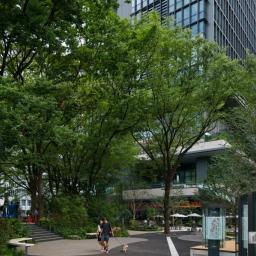 Exterior view of Tokyo Torch, Tokiwabashi Tower (東京トーチ 常盤橋タワー)
