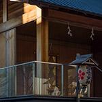 A small house of Akagi Shrine, Park Court Kagurazaka (赤城神社、パークコート神楽坂)