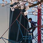 Children climbing jungle gym and The Sumida Hokusai Museum (すみだ北斎美術館)