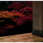 Details of pillar of Japanese Engawa (縁側と紅葉)