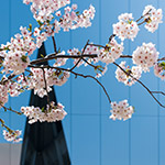 2018-03-28_details_of_the_sumida_hokusai_museumphoto_40321418215