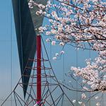 2018-03-28_details_of_the_sumida_hokusai_museumphoto_41284178501