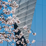 Details of The Sumida Hokusai Museum (すみだ北斎美術館)