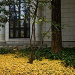 Exterior of Fukagawa Library (江東区立深川図書館)