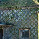 Exterior of Tsubaki-jo (ツバキ城)