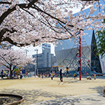 2018-03-28_exterior_view_of_the_sumida_hokusai_museumphoto_40286316245