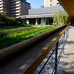Farm on rooftop, Kyoto Yaoichi (京都八百一本館)