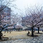 2018-03-28_full_view_of_the_sumida_hokusai_museumphoto_27431724088