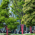 Gardens of The National Art Center, Tokyo (国立新美術館)