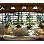 Niigata Syokuiku-Hanaiku Center in equirectangular (新潟市食育・花育センター)