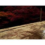 Flooring of Japanese Engawa (縁側と紅葉)