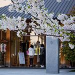 Prayers in Akagi Shrine, Park Court Kagurazaka (赤城神社、パークコート神楽坂)