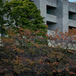 Side facade of Supreme Court of Japan (最高裁判所)