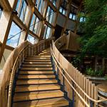 Stairs of Niigata Syokuiku-Hanaiku Center (新潟市食育・花育センター)