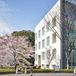 The National Art Center, Tokyo. Annex (新国立美術館 別館)