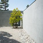 Vestibule Garden of D.T.Suzuki Museum (鈴木大拙館『玄関の庭』)