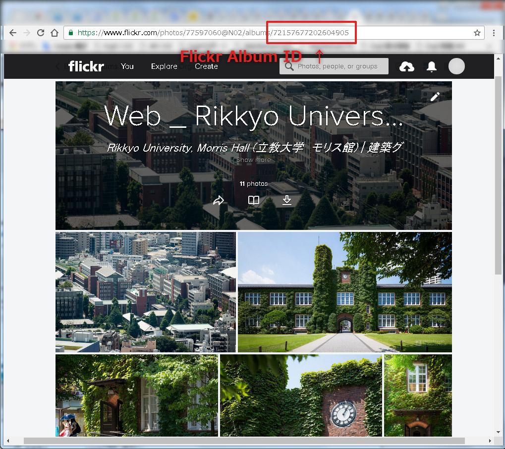 flickr_album_id_on_wordpress-1