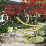 【CG】ひらひらと落ちてゆく落ち葉のパーティクル【UE4】
